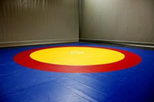 sport-wrestling-mat